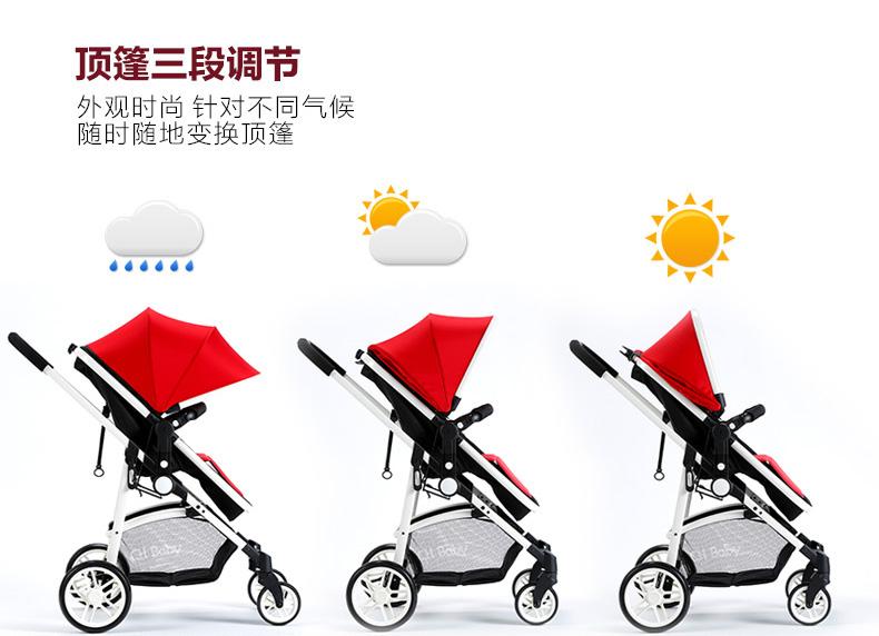 中国婴儿手推车市场发展研究及投资前景报告(目录)